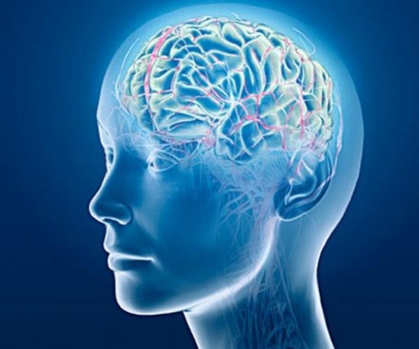 Akıl İle Zeka Arasındaki Fark
